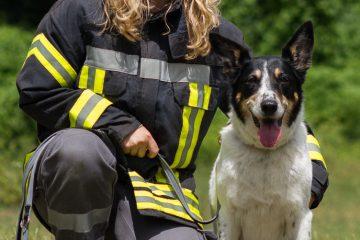 RettungshundestaffelWiesbaden-JasminLuna02