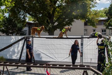 RettungshundestaffelWiesbaden-PPWesthessen_07